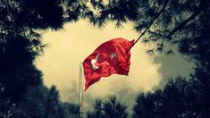 2017 Türk Bayrağı Resimleri