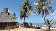 Panoramio - Photo of Praia de Ponta Verde - Maceió - Alagoas - Brasil