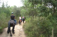 Horseback Riding Tour in Natural Park from Barcelona Saddle up and set off on a horseback adventure through a stunning natural park! On this half-day tour from Barcelona, you'll travel by minibus to the Catalan countryside with an expert local guide. Aimed at novice- to intermediate and advance-level riders, your horseback tour will go at a steady pace, taking in breathtaking scenery that you might not otherwise have the opportunity to see. A light lunch plus two hours o...
