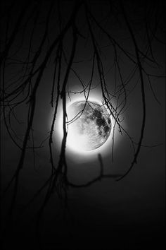 Full Moon. °