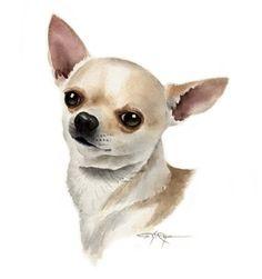 CHIHUAHUA Dog Art Print Signed by Artist DJ Rogers door k9artgallery, $12.50