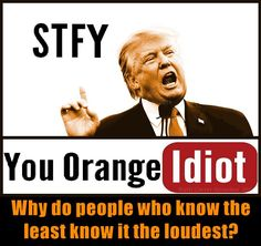 Trump STFY you orange idiot. Why do people who know the least know it the loudest?
