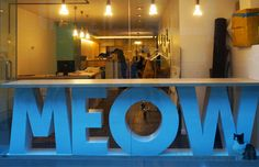 NYC's First Cat Cafe, Meow Parlour, Opens on the Lower East SIde | Inhabitat New York City