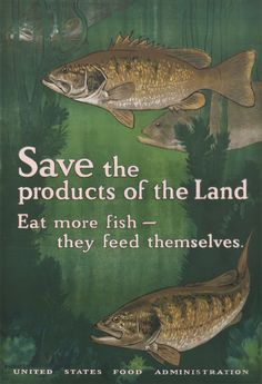 Bull, Charles Livingston: Save the Products of the Land - Eat more fish - they feed themselves. - Vintage Poster