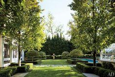 The garden.  Tim Corrigan. AD