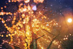 by Sasha_Faq, via Flickr    gorgeous captures - points of light, blurring