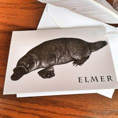 Personalized Platypus Stationery for Kids or Adults Thank You Note 100% Cotton Savoy Paper  - Set of 12 - FREE Gift Wrap on Etsy, $15.00