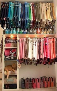 My future barn/tack room… even with the cat. My future barn/tack room… even with the cat. - Art Of Equitation Dream Stables, Dream Barn, Horse Stables, Horse Farms, Tack Room Organization, Tack Locker, Horse Tack Rooms, English Horse Tack, English Saddle Pads