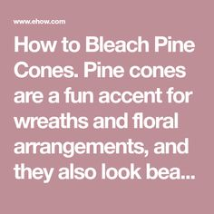 How to Bleach Pine Cones. Pine cones are a fun accent for wreaths and floral arrangements, and they also look beautiful displayed on their own on a mantel or coffee table. While they are usually associated with fall or winter, pine cones can enhance your home all year long, especially when they are bleached. Bleaching gives the pine cones an aged,...