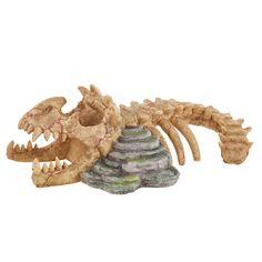 Lizard Habitat, Reptile Habitat, Wild Bird Food, Wild Birds, Reptile Decor, Wire Dog Crates, Flea Shampoo, Dog Pads, Dinosaur Skeleton