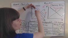 elasticity Teaching Economics, Financial Literacy