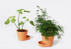 PLANT POTS - 2009 - www.ulibudde.com