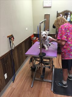 We have grooming by appointment and on Saturdays..