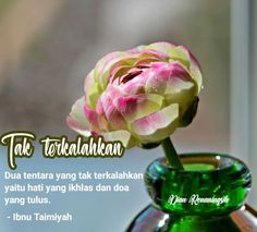 Doa, Cabbage, Vegetables, Quotes, Quotations, Cabbages, Vegetable Recipes, Quote, Shut Up Quotes