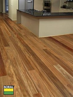 Overlay NSW Spotted Gum