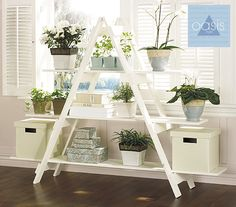"""Bookshelf that works as an herb garden!"" I like that everything is painted white - or you could use another color. It is important to screw the boards into the ladder steps. I like this idea - but only if you have a lot of windows in your house/apt."