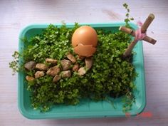 Make an Easter Garden. Say a prayer to thank Jesus for dying for our sins. Can't wait to make!