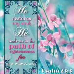 """""""He restoreth my soul: he leadeth me in the paths of righteousness for his name's sake."""" Psalm 23:3 KJV"""