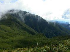 Mount Hamiguitan Range Wildlife Sanctuary, Philippines. Inscription in 2014. Criteria: (x)