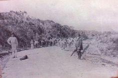 Avenida Pereira Barreto em construção, Baeta Neves 1895.