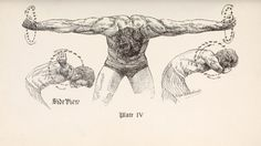 circles for strong shoulders Odd Exercises for Physical Vigor: An Oldtime Strongman's Morning Routine Fitness Nutrition, Men's Fitness, Muscle Fitness, Gain Muscle, Muscle Men, Build Muscle, Nutrition Education, Fitness Motivation, Morning Workout Routine