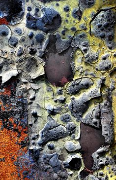"Rust | さび | Rouille | ржавчина | Ruggine | Herrumbre | Chip | Decay | Metal | Corrosion | Tarnish | Texture | Colors | Contrast | Patina | Decay | ""Untitled""  Macro Decay Photography 