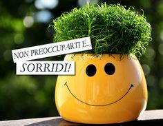 Non preoccuparti e sorridi!