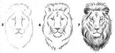 лев пропорция головы: 4 тыс изображений найдено в Яндекс.Картинках