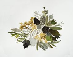 Floral art botanical art works Dried flower decor Unique art Flower art Cool art…