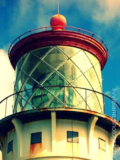 Nautical photography  Kilauea Lighthouse  8 x 10 by livvielane, $25.00