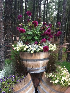 Flower Garden - Most Beautiful Gardening Flowers Ideas For You - DIY Gardening Ideas Container Flower Garden - Most Beautiful Gardening Flowers Ideas For You Container Flowers, Container Plants, Container Gardening, Diy Gardening, Organic Gardening Tips, Vegetable Gardening, Gardening Zones, Garden Shrubs, Garden Pots