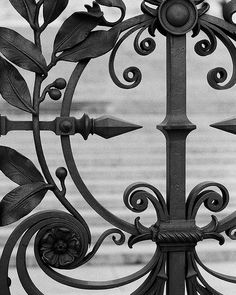 wrought iron by clickykdb, via Flickr || details
