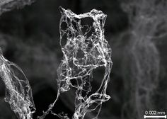 Ethereal aerographite is lightest stuff ever made by Jacob Aron, newscientist: Lighter than aerogel with a microdensity of 1.0 mg/cm³., which was used by NASA to collect dust from a comet or the nickel-phosphorous microlattice by HRL Laboratories with density of  0.9 mg/cm³, aerographite has a density less than 0.2 mg/cm³ and is a network of porous carbon. It is electrically conductive, highly resilient, and absorbs light rays almost completely. Photo by Tuhh, Karl Schulte #Aerographite