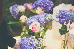 Amy and John's Backyard Surprise Wedding