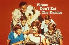 Please Don't Eat the Daisies TV Show