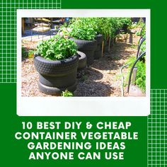 10 Best DIY & Cheap Container Vegetable Garden Ideas Anyone Can Use- . - 10 Best DIY & Cheap Container-Vegetable Garden Ideas Anyone Can Use- 10 Best Garden Ideas For Home -