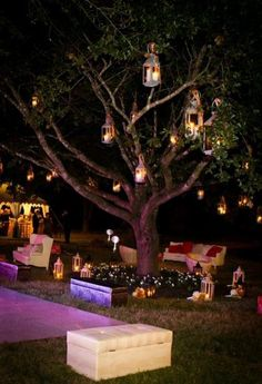 Garden tree Decor ~ Would look great with large scatter cushions bean bag seating underneath to crash out later in the evening