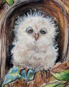 "☆•°☆•°New Listing!!- SLEEPY LITTLE OWL.CLOSE YOUR EYES"" Print~ Original pastel painting by Laurie Shanholtzer"