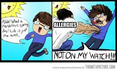 funny-spring-summer-allergies
