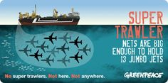 The largest super trawler net is able to hold 13 jumbo jets.