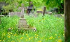 Avoid the funeral sting: how to die for less than £1,000;http://www.theguardian.com/money/2014/jun/28/funeral-die-low-cost-options?CMP=fb_gu