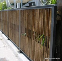 Fence, modern but organic...love it!!