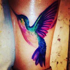 pretty coloured hummingbird