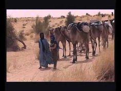 Syusy Blady: Nel conflitto in Mali gli islamisti in fuga dalle truppe franco-maliane hanno dato fuoco alla Biblioteca di Timbuctù. A Timbuctù ci sono andata anni fa, proprio per visitare la Biblioteca piena di manoscritti antichissimi arrivati attraversando il deserto, portati dai cammellieri (...) La conoscenza antica sopravvive solo se vogliamo farla sopravvivere! Applicandoci nella ricerca della verità, sempre minacciata, perché nemica dell'ignoranza. (continua...)