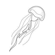This Jellyfish design is part of a series that I will post time after time. Octopus Drawing, Whale Drawing, Jellyfish Drawing, Jellyfish Tattoo, Jellyfish Art, Line Drawing Tattoos, Line Tattoos, Body Art Tattoos, Tatoo