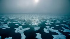 The average U.S. family destroys a football field's worth of Arctic sea ice every 30 years.