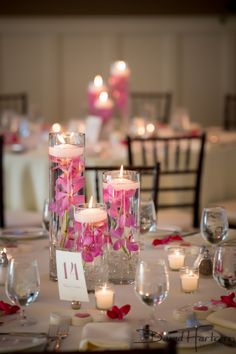 Pink Orchid Centerpieces. Glass Cylinder Centerpieces