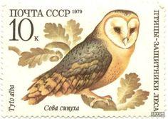 Почтовая марка - особый знак, продаваемый и выпускаемый национальными (и иными)  почтовыми ведомствами и обладающий определённой номинальн...