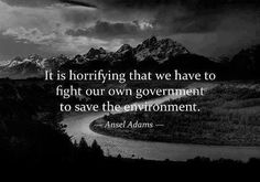 Ansel Adams: It's horrifying that we have to fight our own government to save the environment.