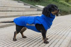 Extra Warm Winter Dog Coat - Dog Jacket with neck warmer and full belly cover - Waterproof / Fleece dog clothes - MADE TO ORDER Dog Winter Coat, Dog Raincoat, Dog Jacket, Dog Wear, Dog Sweaters, Dog Coats, Waterproof Fabric, Neck Warmer, Dog Breeds